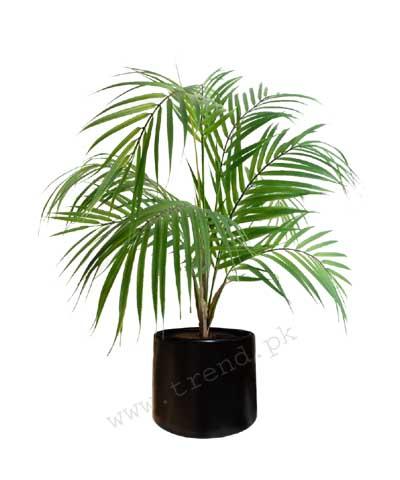 plant-pot-planter-fiberglass-small