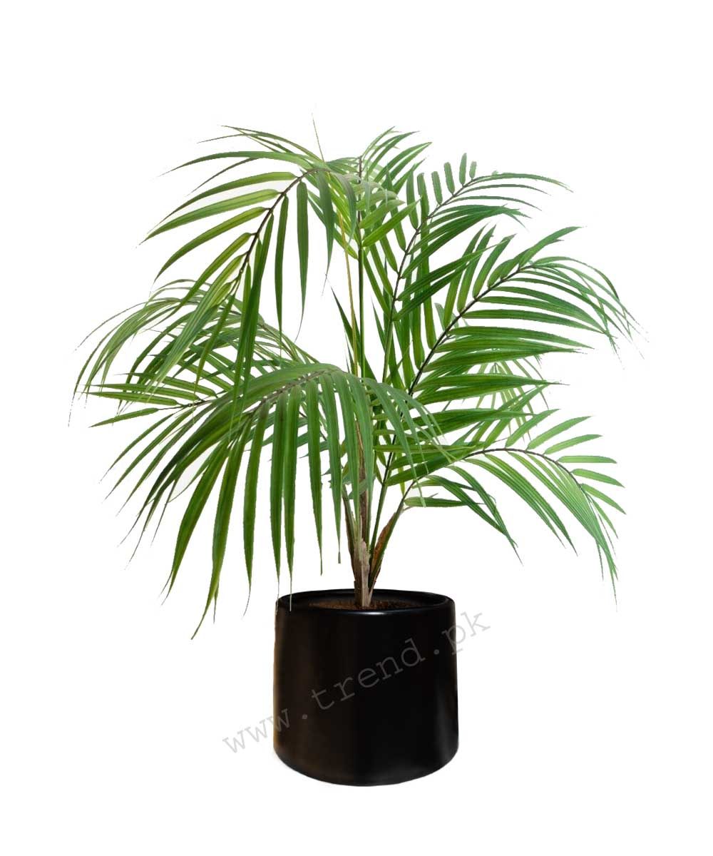 plant-pot-planter-fiberglass